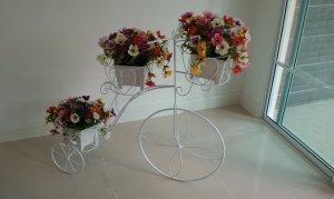 จักรยานดอกไม้